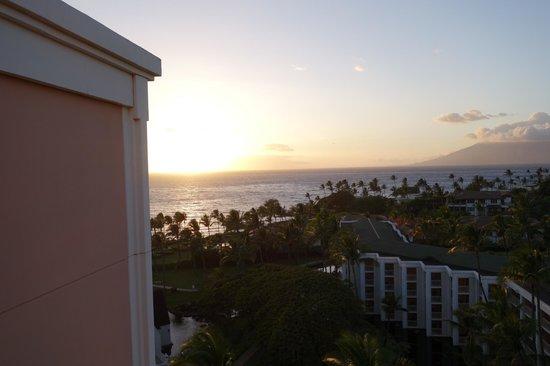 Grand Wailea - A Waldorf Astoria Resort : Great View