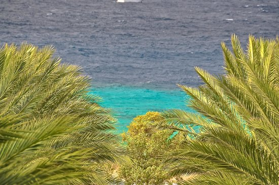Santa Barbara Beach & Golf Resort, Curacao : shore