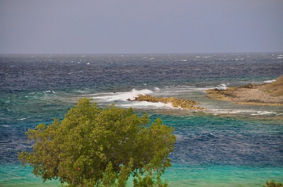Santa Barbara Beach & Golf Resort, Curacao: view from shoreline