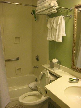 Bienville House: Bathroom-nice!