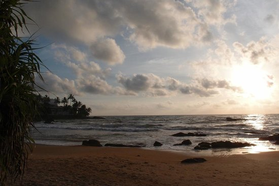 Ranveli Beach Resort : ocean