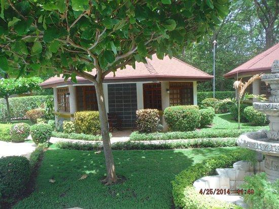 Villa Acacia : other villas