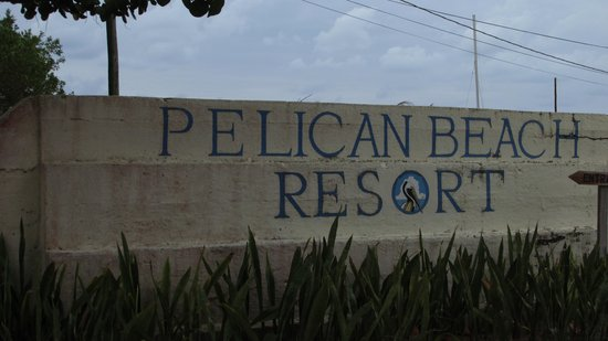 Pelican Beach - Dangriga: Great restaurant!