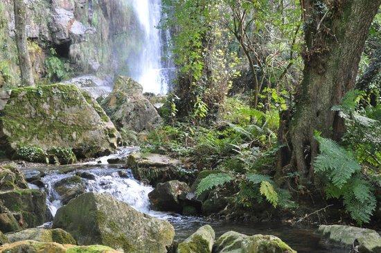 Hotel Rural Yeguada Albeitar: Cascadas ed Oneta