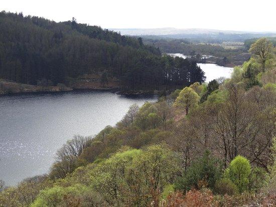 Glentrool Camping and Caravan Site: Loch Trool