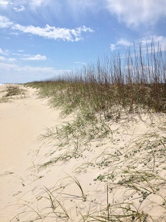 Cape Hatteras National Seashore: Down the beach. Lighthouse is off to the Right.