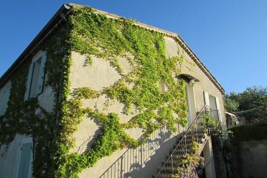 La Ferme du Petit Segries : Green wall