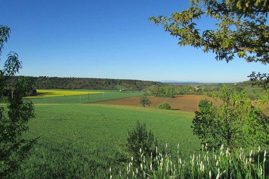 La Ferme du Petit Segries : Fields around the Ferme