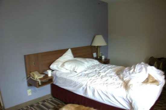 Microtel Inn by Wyndham Albany Airport: Queen size bed, no lamp
