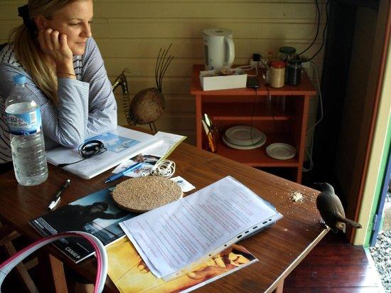 La Koumbala: colazione con deliziosi uccellini