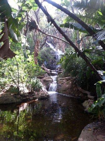 Pretoria National Botanical Garden All You Need To Know Before You Go With Photos Tripadvisor
