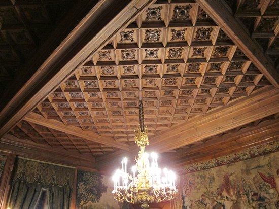 Château de Pau : techos de los salones