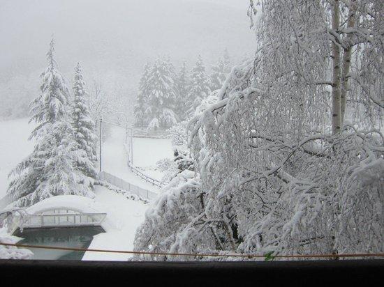 Agriturismo La Casa sul Poggio: Una bella nevicata