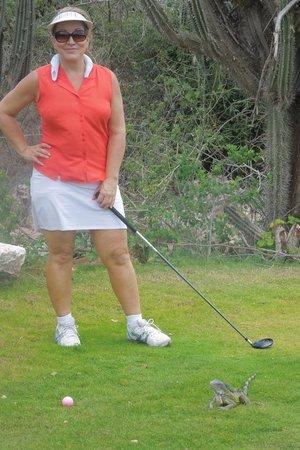 Old Quarry Golf Course: hazards?