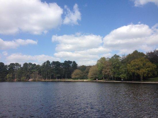 Sutton Park National Nature Reserve: Sutton Park