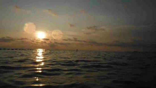 Nhat Lan : Sundown ( Perfect )