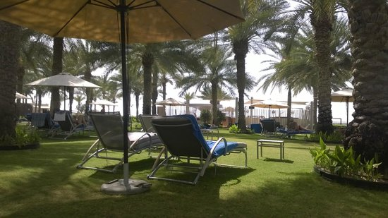 Sheraton Jumeirah Beach Resort: The beach during the day