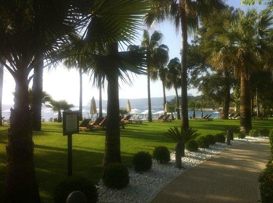 Club Med Palmiye : vu face au resto