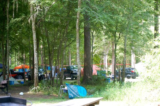 Ginnie Springs : Camping