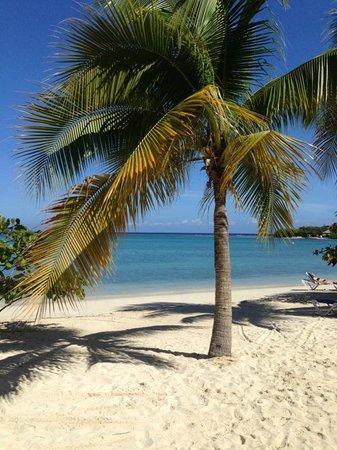 Hotel Riu Palace Jamaica: Tropical Beach