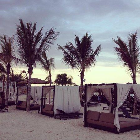 Royalton White Sands Resort : beach before sunset