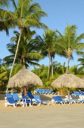 Grand Bahia Principe El Portillo: plage El Protillo