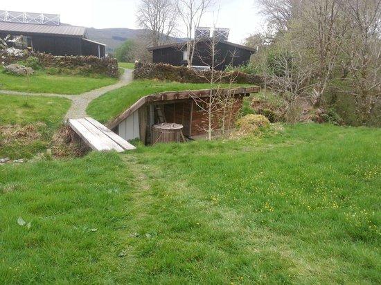 EcoYoga Centre: Hideaway sauna