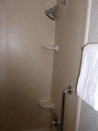 Crowne Plaza Tysons Corner: shower in bathtub