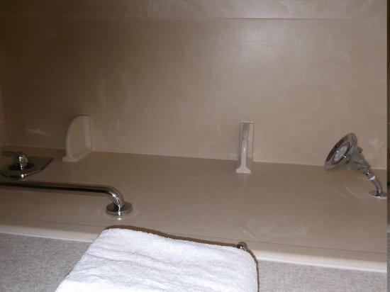 DoubleTree by Hilton McLean Tysons: shower in bathtub