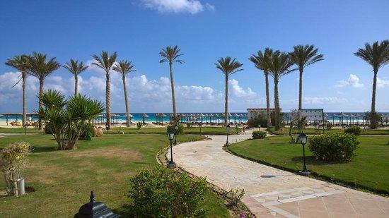 Jaz Almaza Beach Resort: Giardini