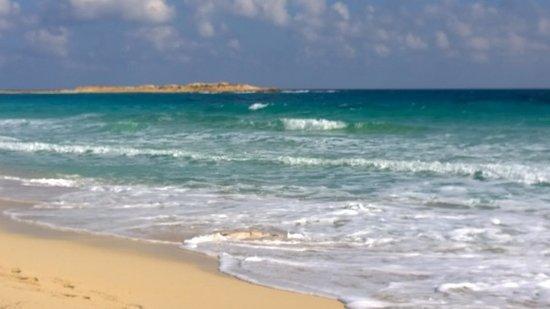 Jaz Almaza Beach Resort: Mare bellissimo