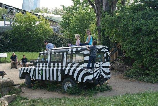 Zoologischer Garten Frankfurt/Main: Kids enjoying