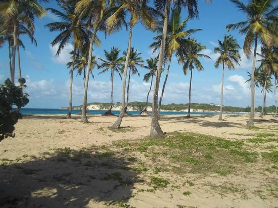 macao beach 2