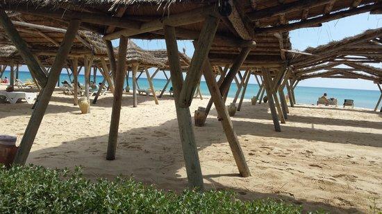 The Orangers Beach Resort & Bungalows : Beach