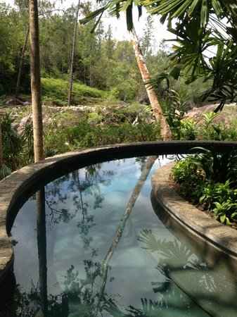Blancaneaux Lodge: The hot pool