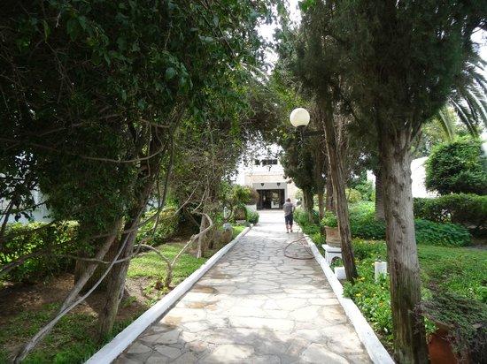 The Orangers Beach Resort & Bungalows: Path to Reception 2