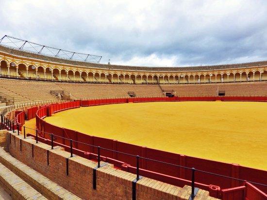 Plaza de Toros de la Maestranza : vue des gradins 2