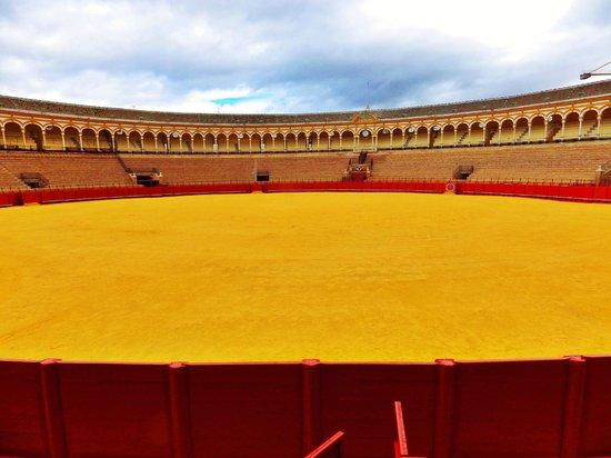 Plaza de Toros de la Maestranza : vue des gradins 3