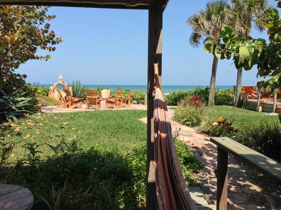 Beach Place Guesthouses : View from one of many hammocks.