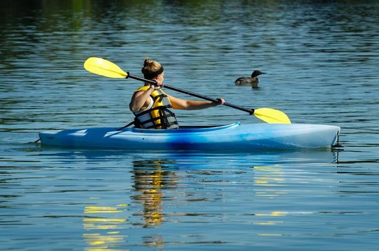 The Pointe Hotel & Suites: The Pointe Hotel Kayaks on Lake Minocqua
