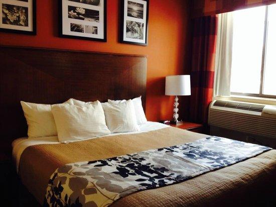 Sleep Inn - Long Island City : Room