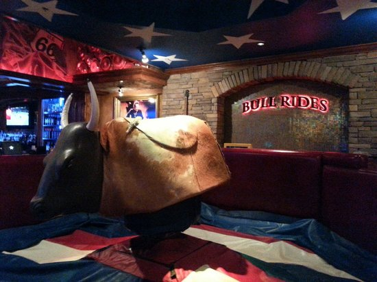 Cadillac Ranch: Didn't ride the bull but I bet it would be fun!