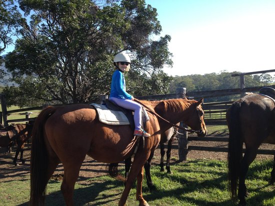 Lillydale Farmstay: 6yo daughter riding 'Big Red' - first time rider!