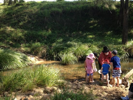Lillydale Farmstay: Exploring the creek as part of the Tractor ride