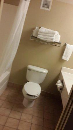 Country Inn & Suites By Carlson, Orlando Universal: bathroom