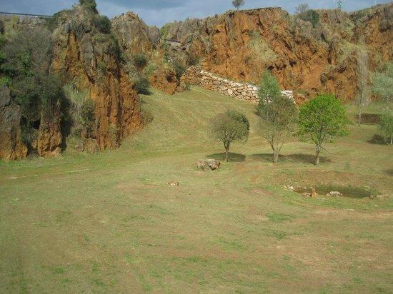 Parque de la Naturaleza de Cabarceno - Foto di Cabarceno Nature Park, Obregon...