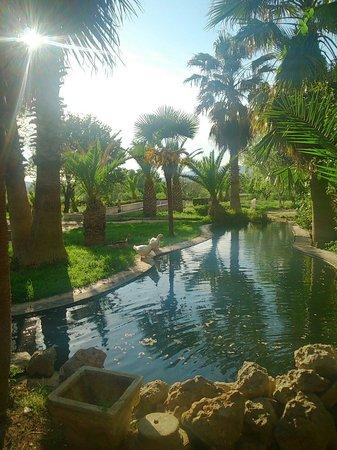 Hotel Las Navas: Me gusta