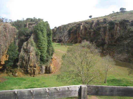 Parque de la Naturaleza de Cabarceno - Foto de Cabarceno Nature Park, Obregon...