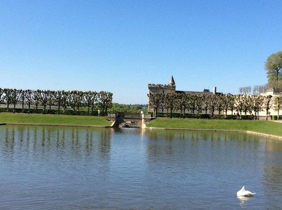 Chateau de Villandry : Pond with a view