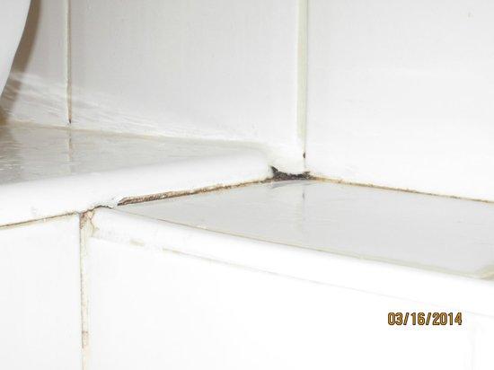 Crowne Plaza Paris Republique: Bathroom tile